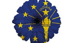 Maternity Leave Laws in Indiana